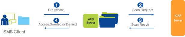 AFS_ICAP_Overview